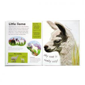 Real-size Baby Animals, DK, llama spread