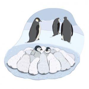 Penguins Huddling, client: DK