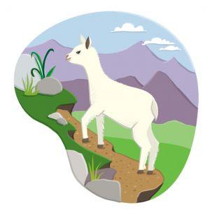 Young Llama, client: DK