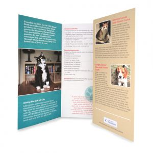 Capabilities brochure for ACCES Blood Bank, interior