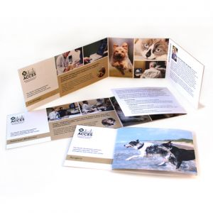 ACCES specialty brochures, interiors